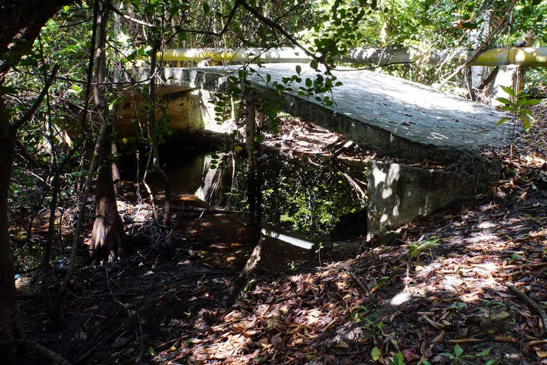little-bridge-pipeliine-trail